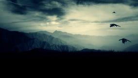 Smoki latają wysoko w niebie nad góry zbiory wideo