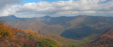 Smokies Stockbilder