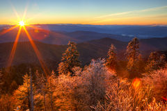 smokies Photo stock