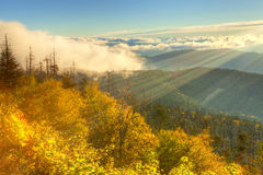 Smokies Royalty Free Stock Image