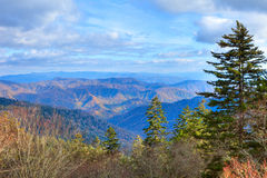 Smokies Royalty Free Stock Photo