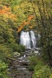 Smokies Waterfall in Autumn Stock Images