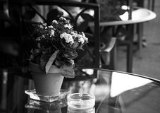 Smoking allowed. Closeup photo of an outdoor cafe table with some flowers and a glass cigarette tray Stock Photos
