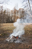 Smoking bonfire at forest Royalty Free Stock Images