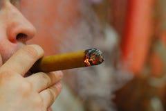 Smoking cigar Stock Photos