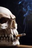 Smoking death. Close up of a smoking skull Royalty Free Stock Photo