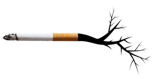Smoking Royalty Free Stock Photography