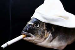 Smoking fish. Fish with a hat enjoying a cigarette Stock Image