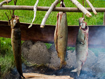 Smoking fish the old fashioned way Royalty Free Stock Images