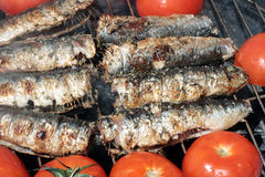 Smoking grilled sardines Royalty Free Stock Images
