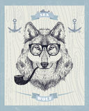 Smoking hipster wolf with sunglasses and tobacco pipe. royalty free illustration