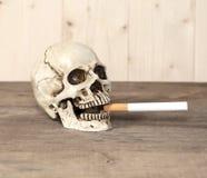 Smoking human skull and cigarette Stock Photos