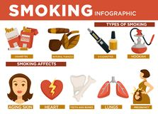 Smoking Infographic Types And Affect On Body Vector Royalty Free Stock Photography