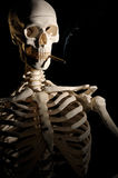 Smoking isn't good for you. Human skeleton is smoking a cigar. Smoking is not good for your health Stock Photos