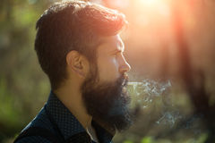 Smoking man in forest Stock Images