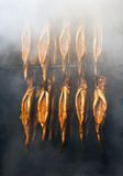 Smoking rainbow trout Stock Images