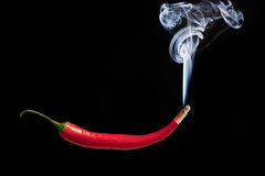 Smoking red hot chilli pepper with burning tip Royalty Free Stock Photo