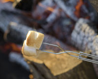 Smoking Roasted Marshmallows Stock Photography