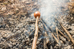 Smoking sausages on the smoke. Sausages over the coals, heat. Cooking in forest Royalty Free Stock Photography