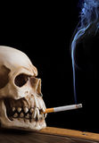Smoking skull Royalty Free Stock Photos