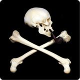 Smoking skull Stock Photo