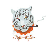Smoking tiger cartoon Royalty Free Stock Photo
