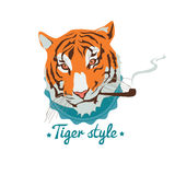 Smoking tiger portret Stock Photo