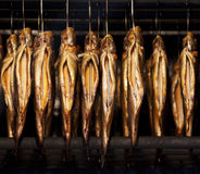 Smoking trout Stock Images