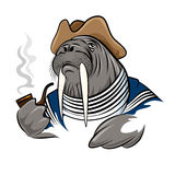 Smoking Walrus Royalty Free Stock Photo