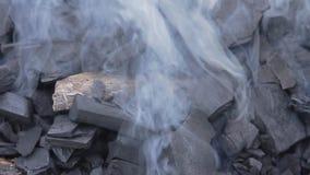 Smoking wood charcoal stock footage