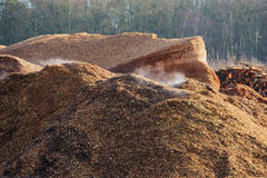 Smoking wood chips Royalty Free Stock Photo