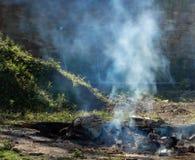 Smoky bonfire stock photo
