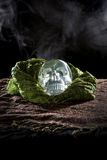 Smoky Crystal Skull Royalty Free Stock Images