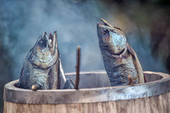 Smoky fish Stock Image