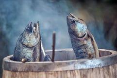 Smoky fish. Close-up of smoked fish Stock Image