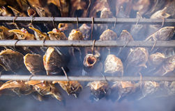 Smoky fish in smokehouse Stock Images