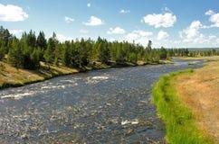 Yellowstone Geyser Stock Photos
