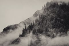 Fog covering the mountain forests with low cloud in Juneau alaska for fog landscape Royalty Free Stock Image