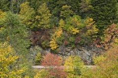 Smoky Mountain Autumn Stock Image