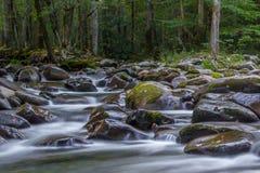 Smoky Mountain Creek Royalty Free Stock Image