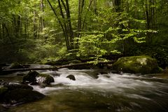 Smoky Mountain Dream Stock Photography