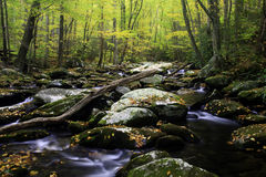 Smoky Mountain Fall Royalty Free Stock Images