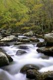 Smoky Mountain Fall Stream. A beautiful fall mountain stream in Smoky mountain National Park Royalty Free Stock Image