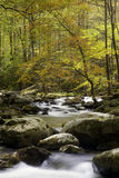 Smoky Mountain Fall Stream Royalty Free Stock Images