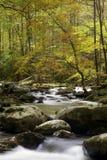 Smoky Mountain Fall Stream. A beautiful fall mountain stream in Smoky mountain National Park Royalty Free Stock Images