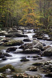 Smoky Mountain Fall Stream. A beautiful fall mountain stream in Smoky mountain National Park Royalty Free Stock Photos