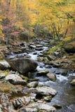 Smoky Mountain Fall Stream. A beautiful mountain stream in smoky mountain National Park Stock Photography