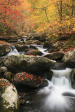 Smoky Mountain Fall Stream. A beautiful mountain stream in smoky mountain National Park Royalty Free Stock Photos