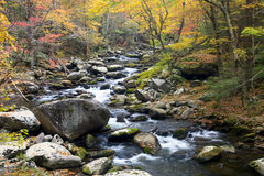 Smoky Mountain Fall Stream Stock Image