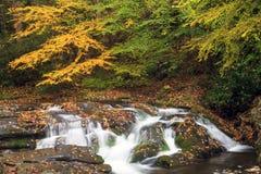 Smoky Mountain Fall Stream. A beautiful mountain stream in smoky mountain National Park Stock Image